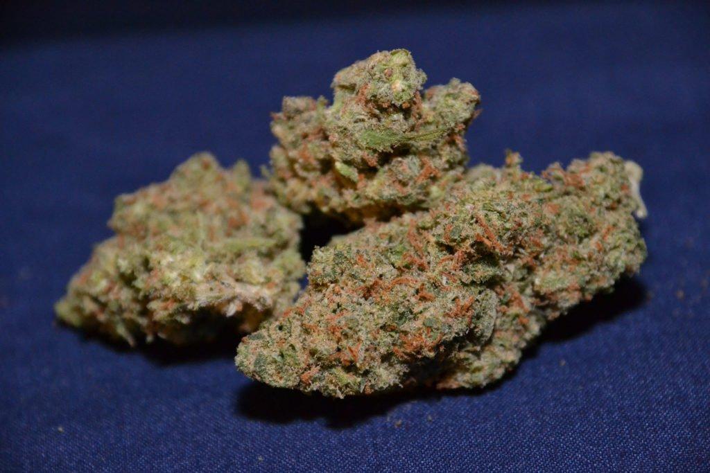 Hash_vs_weed_cannabis-4-1024x683.jpg